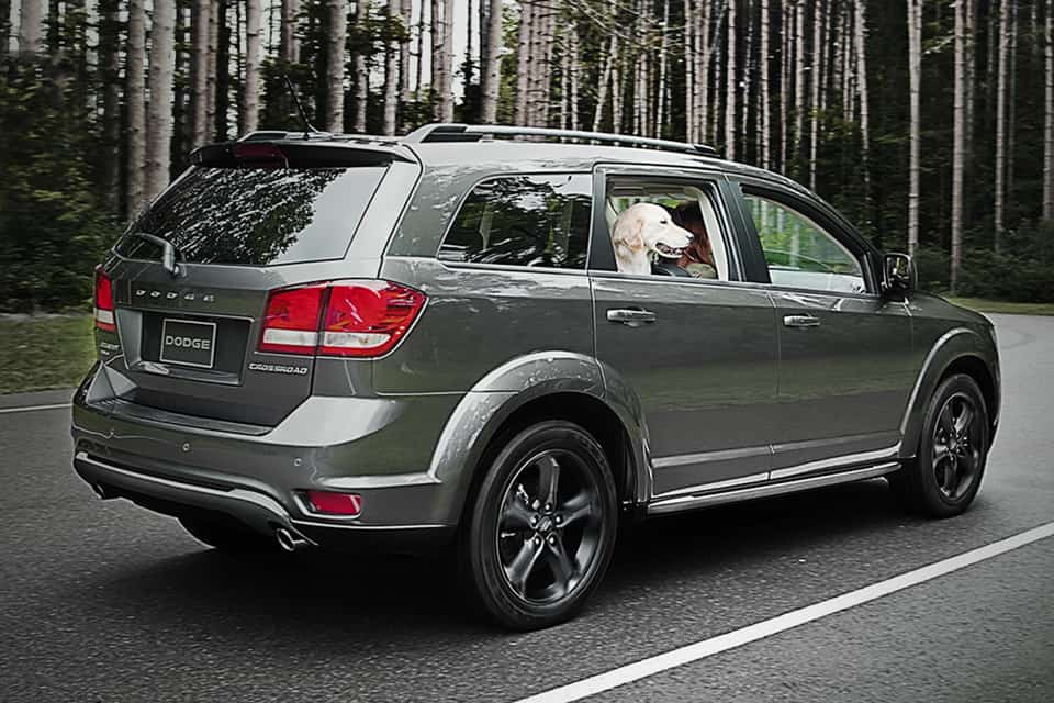 2019 Dodge Journey in grey parked in a foresty highway with the dog peeping out the window