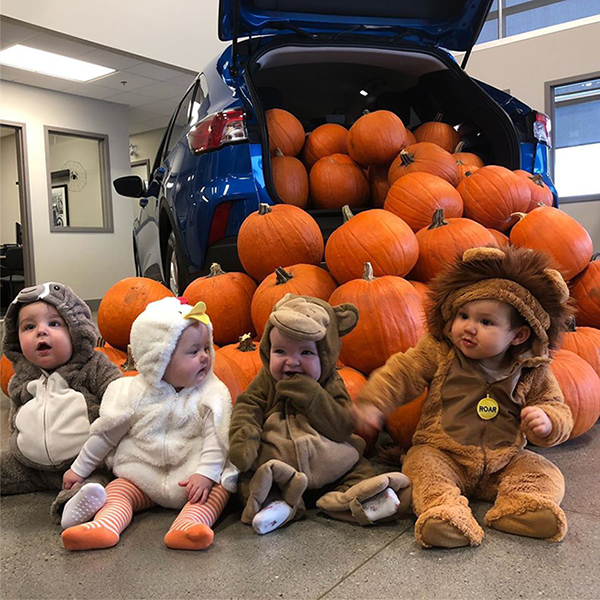 Babies In Costume With Pumpkins