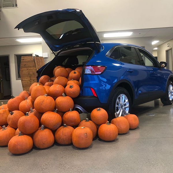 Pumpkins In Suv