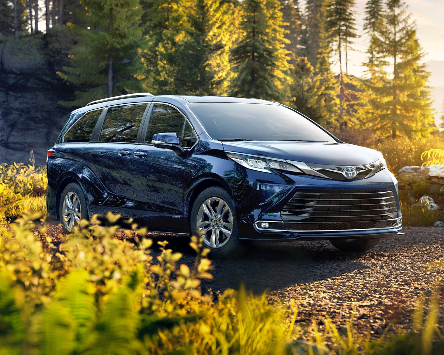 2021 Black Toyota Sienna, parked in the wood, glistening from the sun.