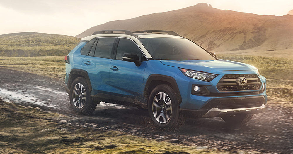 Toyota 2019 RAV4 Driving in rural pathway