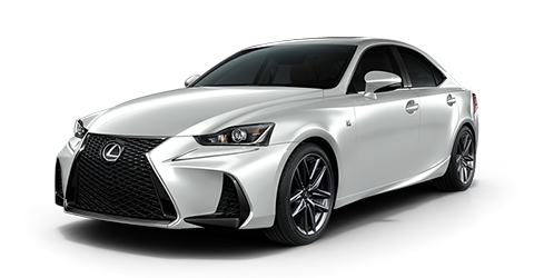 2019 Lexus IS Jellybean