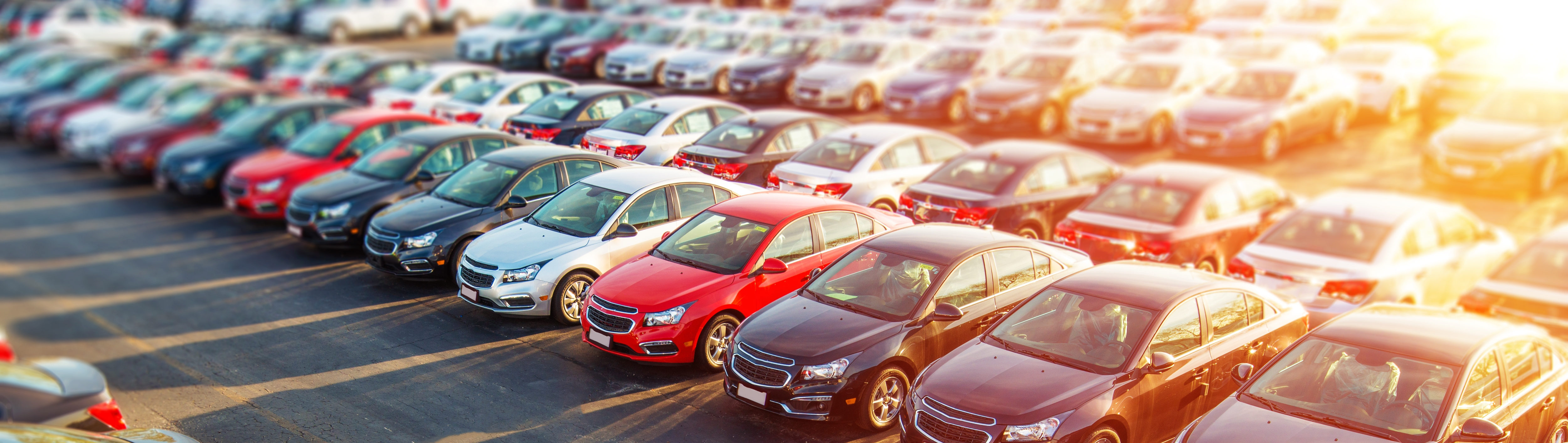 Pre-owned vehicles for customers to choose from