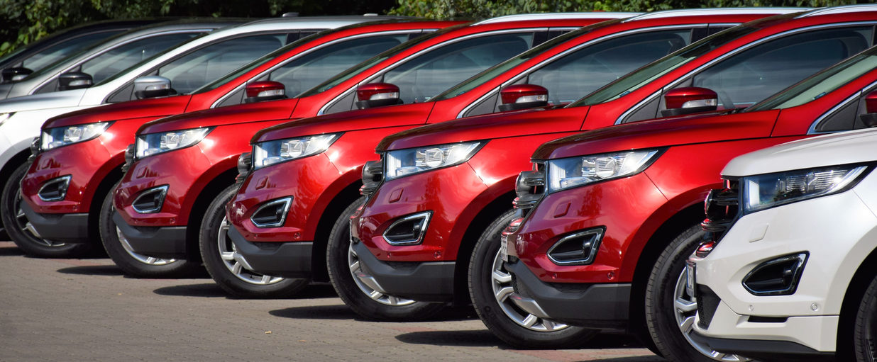 Ford SUV vehicles parked in a row