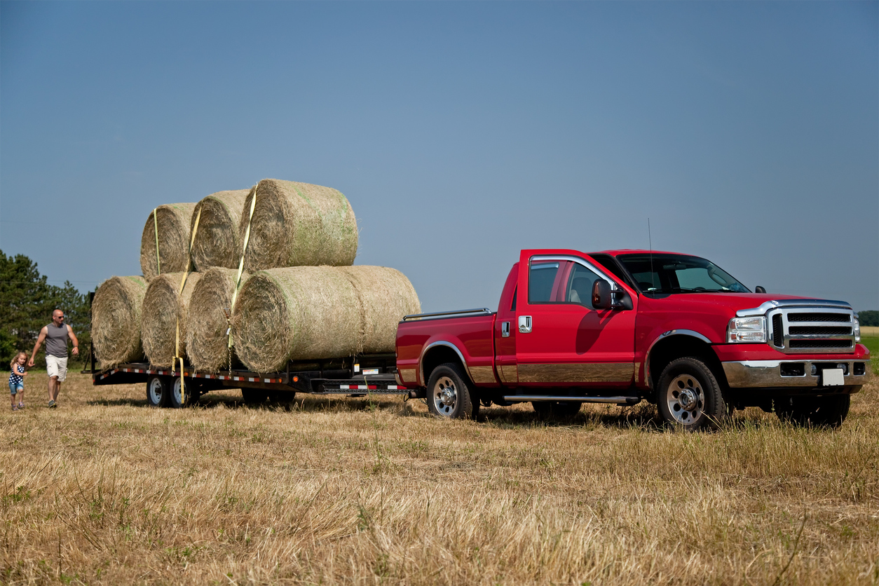 Load of Hay Bales Ready to Be Hauled Away on a Truck