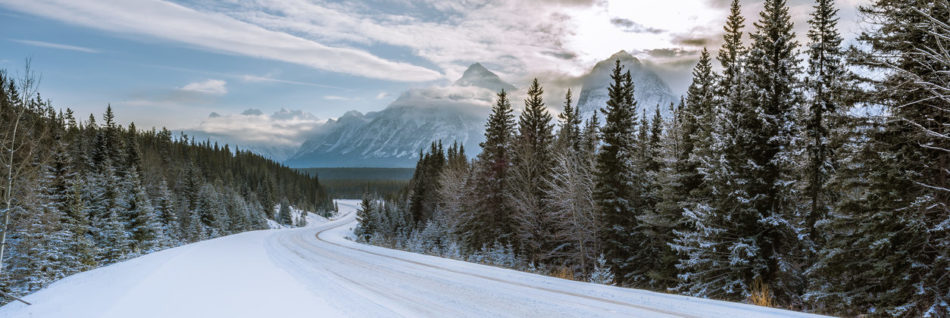 Panoramic winter landscape in Canadian Rockies