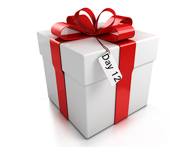 12 days of Christmas Day 12 Present