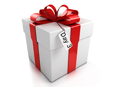 12 days of Christmas Day 3 Present