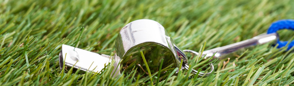a whistle laying in the green grass of a field