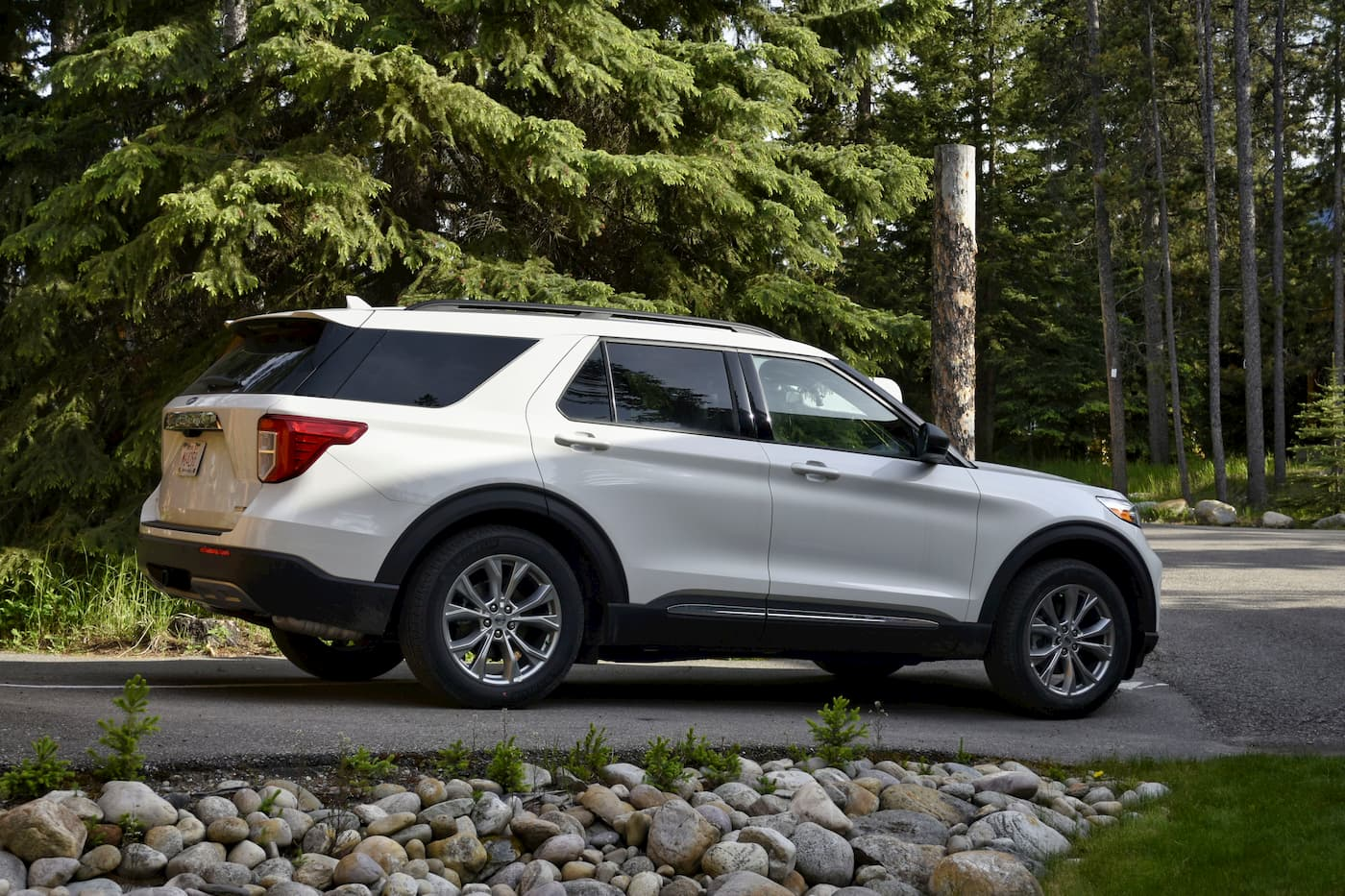 2020 White Ford Explorer Parked By Tree