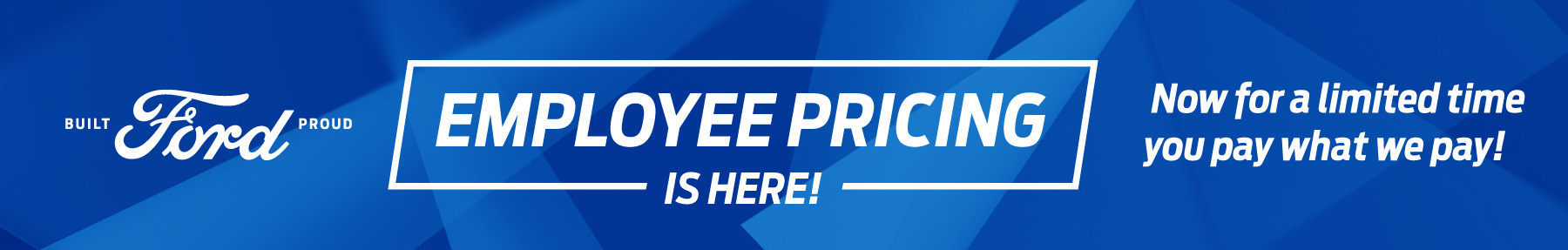 661507207 Team Ford Employee Pricing Banner Option1 7x1
