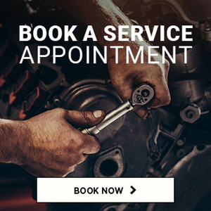 Goauto Book A Service Home