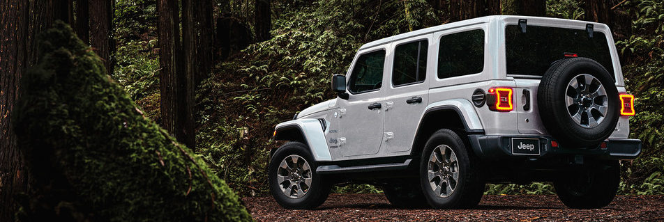2019 Jeep Wrangler with hard top oarked in a forest