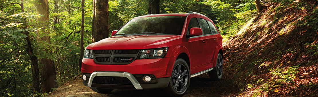 2019 Dodge Journey parked in a forest pathway