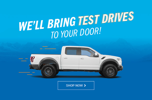 Test Drive to your door Mobile