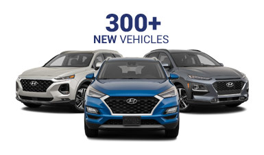 300 New Vehicles Jellybeans