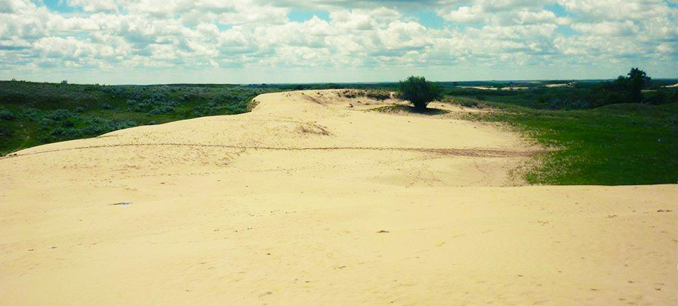 great sandhills of saskatchewan