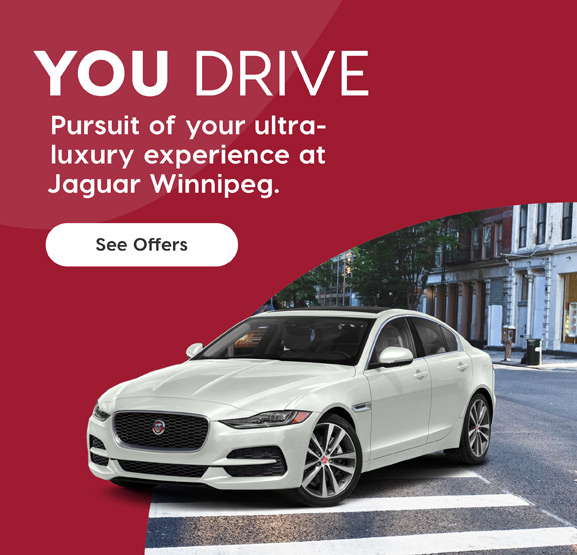 You Drive Banner Mobile