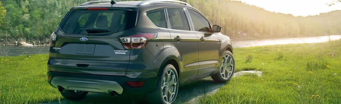 2019 Ford Escape Titanium in dark grey & black parked on grass looking pensively at the beautiful sunset