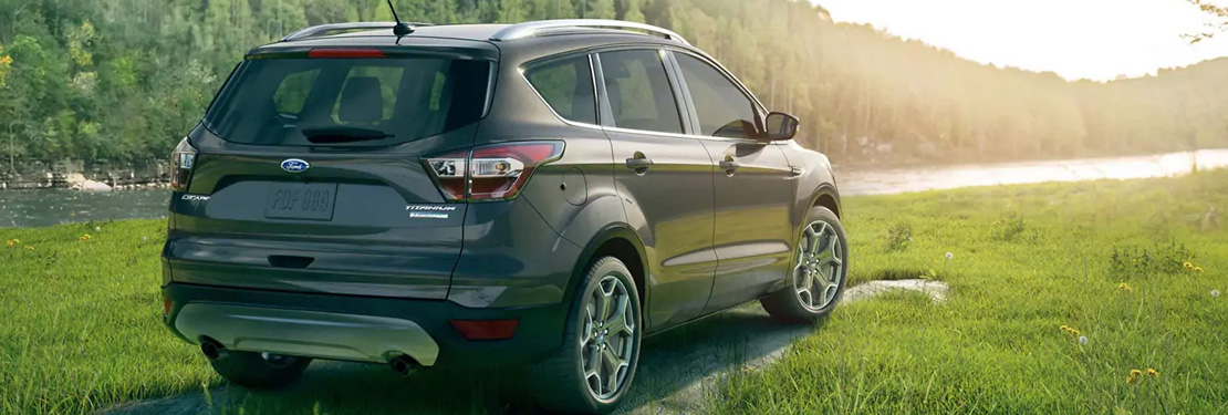 2019 Ford Escape model