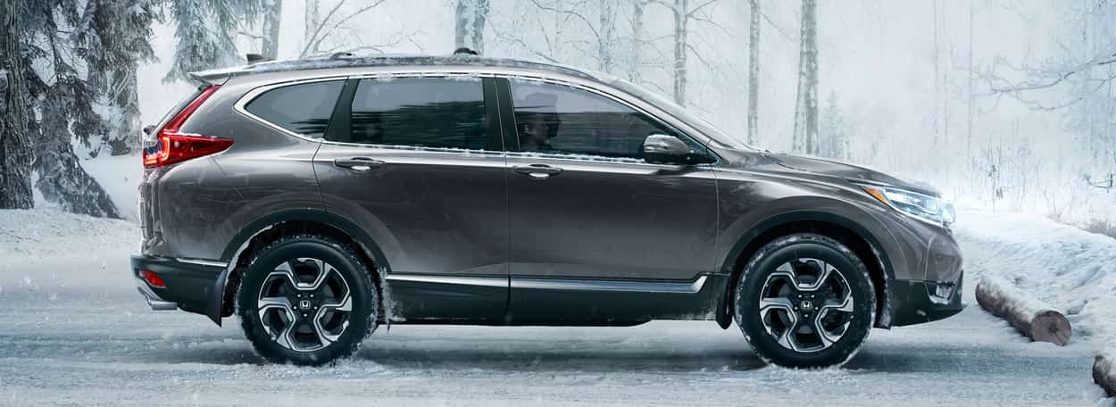 2019 Honda CR-V in grey parked in a snowy forest