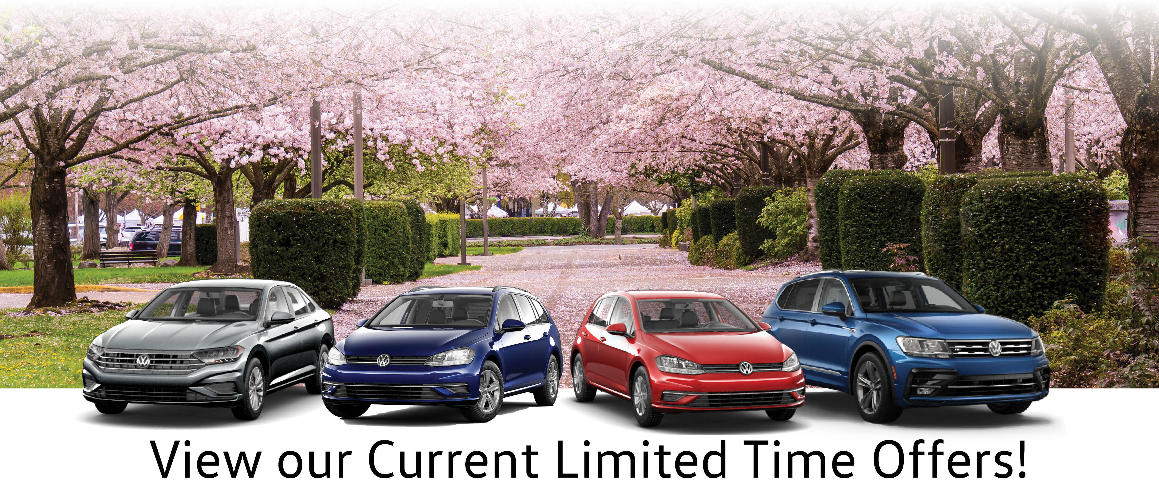 Milton Volkswagen Current Limited Time Offers