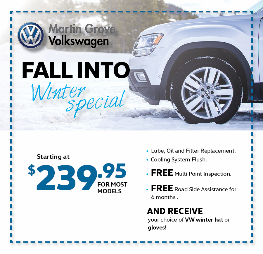 Fall into Winter Special