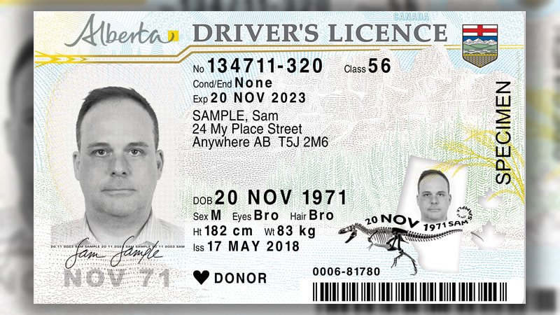 drivers license picture rules alberta