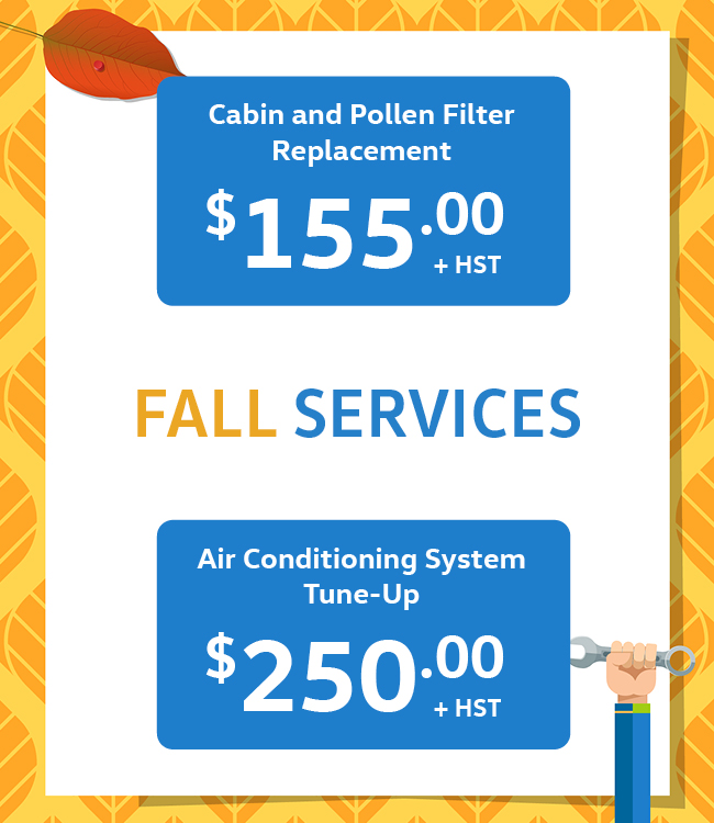 Mississauga Vw Service Specials Filter Replacement
